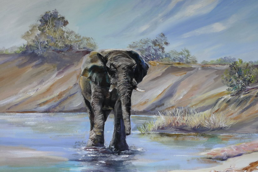 Obra De Arte >> Inspirational Paintings >> Elefante Wade